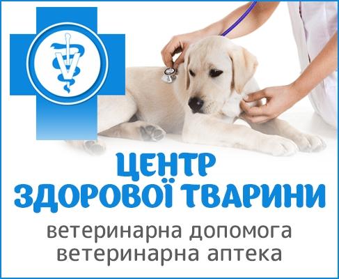 Центр здорової тварини