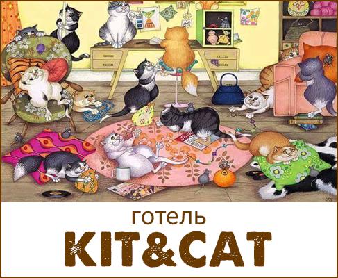 Кіт & Cat, готель для котів та собак