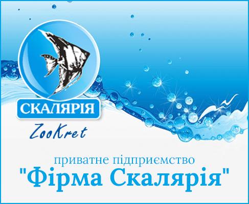 «Фірма Скалярія», ПП